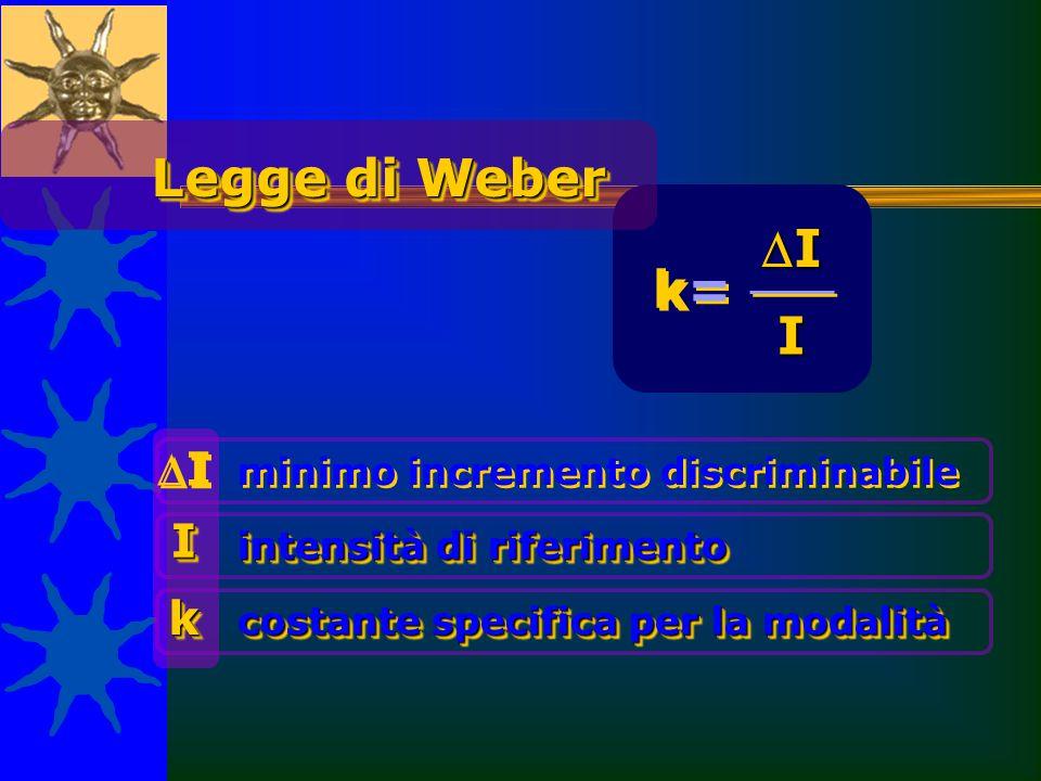 0,02 Chiarezza dell'illuminazione 0,10 Suono di altezza media 0,14 Pressione sulla pelle 0,33 Sapore di sale La costante è specifica k Stimolo/modalità