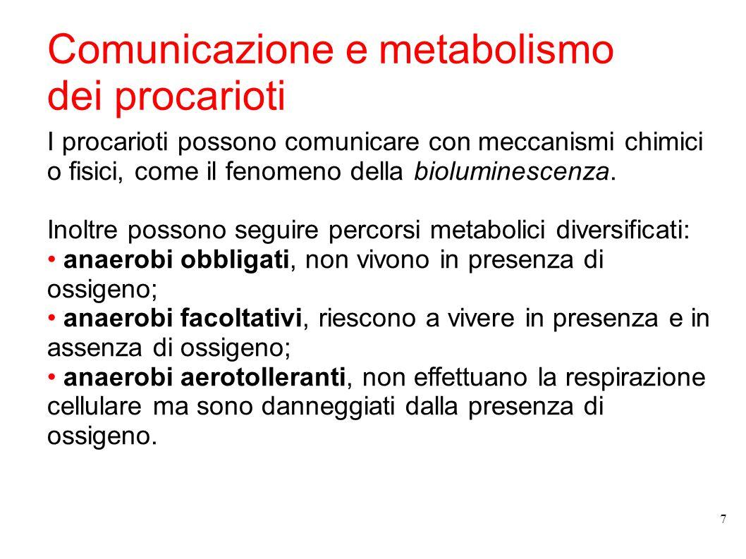 Comunicazione e metabolismo dei procarioti I procarioti possono comunicare con meccanismi chimici o fisici, come il fenomeno della bioluminescenza. In