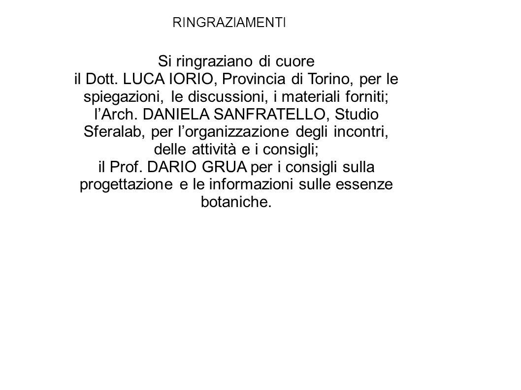 RINGRAZIAMENTI Si ringraziano di cuore il Dott. LUCA IORIO, Provincia di Torino, per le spiegazioni, le discussioni, i materiali forniti; l'Arch. DANI