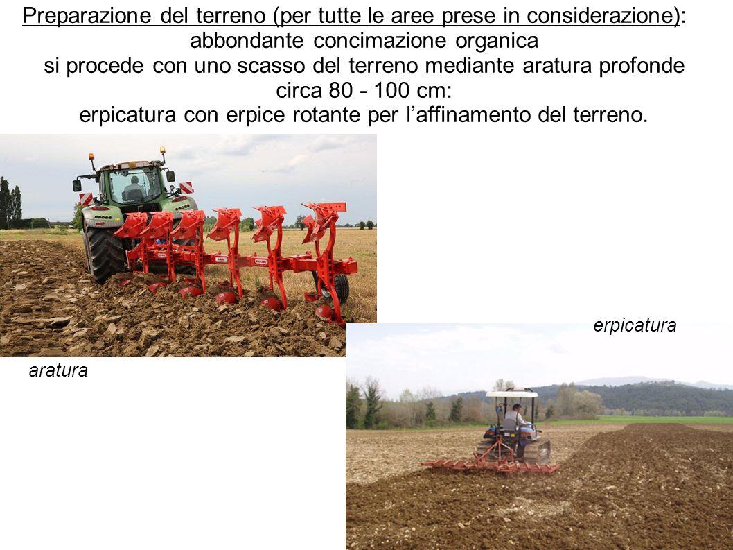 Preparazione del terreno (per tutte le aree prese in considerazione): abbondante concimazione organica si procede con uno scasso del terreno mediante