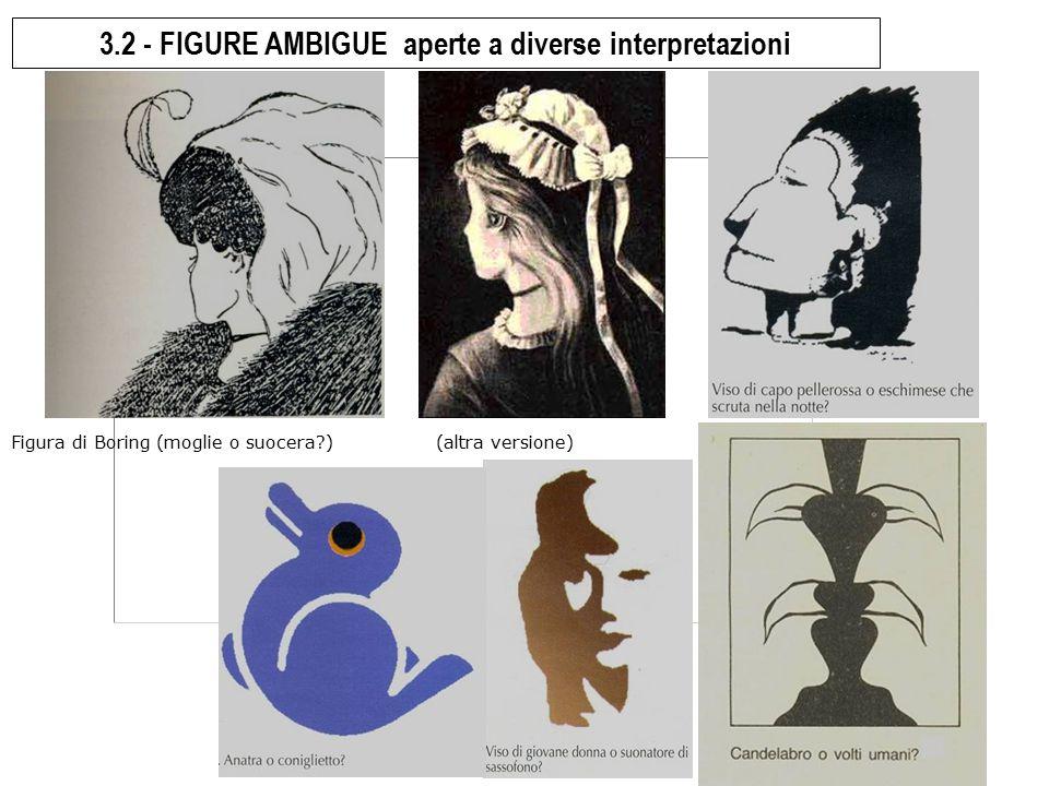 università di macerata - sdf - arte e disegno - 2014-15 (7) 3.2 - FIGURE AMBIGUE aperte a diverse interpretazioni Figura di Boring (moglie o suocera?)