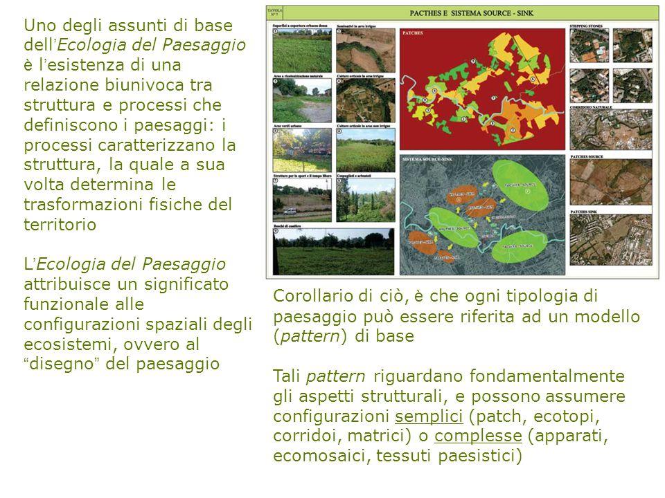 Uno degli assunti di base dell ' Ecologia del Paesaggio è l ' esistenza di una relazione biunivoca tra struttura e processi che definiscono i paesaggi: i processi caratterizzano la struttura, la quale a sua volta determina le trasformazioni fisiche del territorio L ' Ecologia del Paesaggio attribuisce un significato funzionale alle configurazioni spaziali degli ecosistemi, ovvero al disegno del paesaggio Corollario di ciò, è che ogni tipologia di paesaggio può essere riferita ad un modello (pattern) di base Tali pattern riguardano fondamentalmente gli aspetti strutturali, e possono assumere configurazioni semplici (patch, ecotopi, corridoi, matrici) o complesse (apparati, ecomosaici, tessuti paesistici)