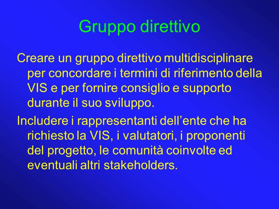Gruppo direttivo Creare un gruppo direttivo multidisciplinare per concordare i termini di riferimento della VIS e per fornire consiglio e supporto dur