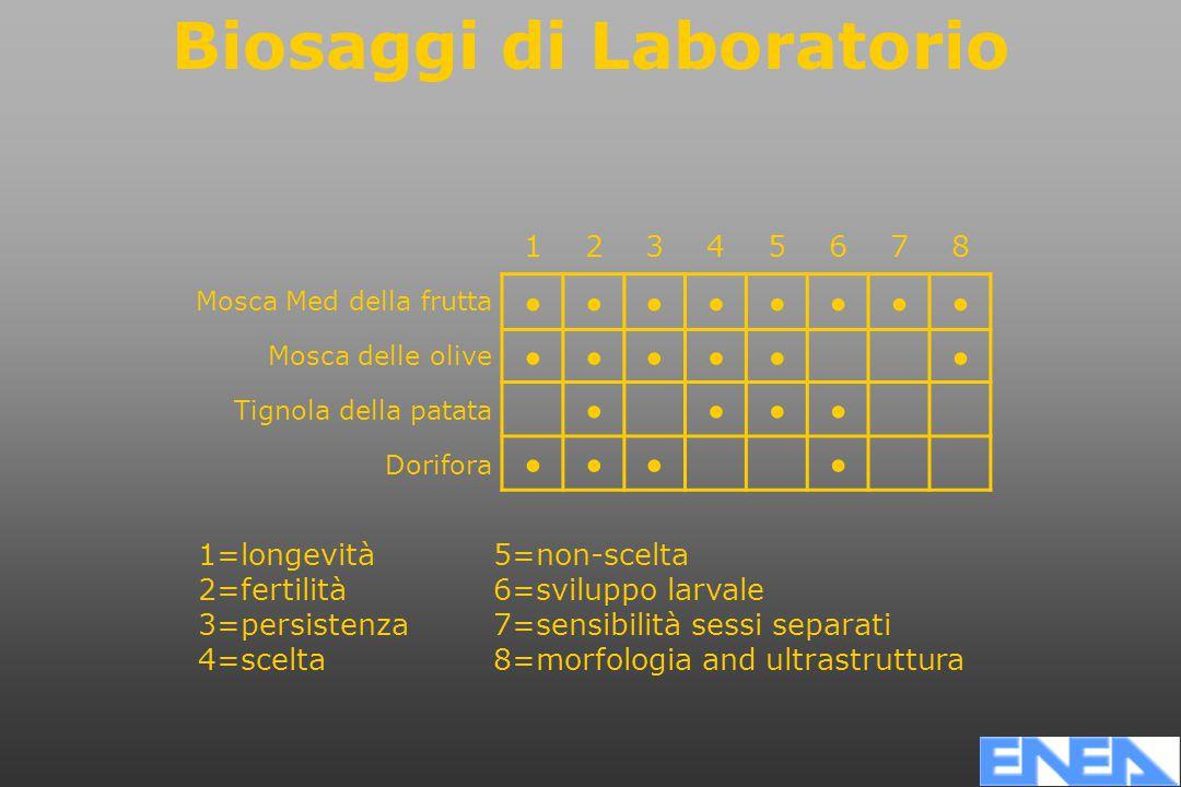 12345678 Mosca Med della frutta Mosca delle olive Tignola della patata Dorifora 1=longevità 2=fertilità 3=persistenza 4=scelta 5=non-scelta 6=sviluppo larvale 7=sensibilità sessi separati 8=morfologia and ultrastruttura Biosaggi di Laboratorio