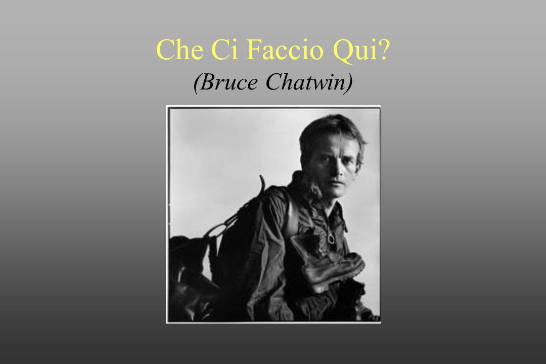 Che Ci Faccio Qui (Bruce Chatwin)