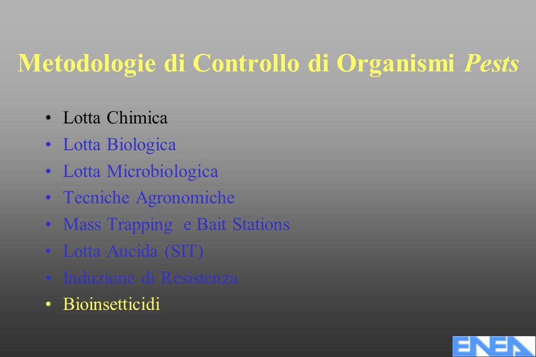 Metodologie di Controllo di Organismi Pests Lotta Chimica Lotta Biologica Lotta Microbiologica Tecniche Agronomiche Mass Trapping e Bait Stations Lotta Aucida (SIT) Induzione di Resistenza Bioinsetticidi