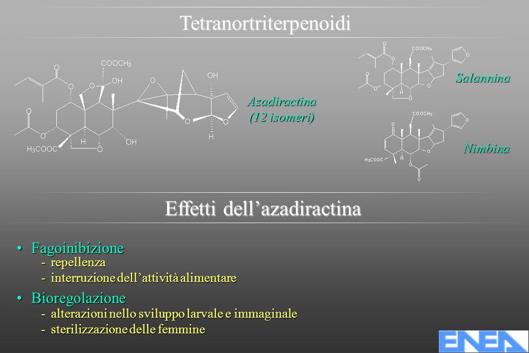 Tetranortriterpenoidi Azadiractina (12 isomeri) Nimbina Salannina FagoinibizioneFagoinibizione -repellenza -interruzione dell'attività alimentare BioregolazioneBioregolazione -alterazioni nello sviluppo larvale e immaginale -sterilizzazione delle femmine Effetti dell'azadiractina