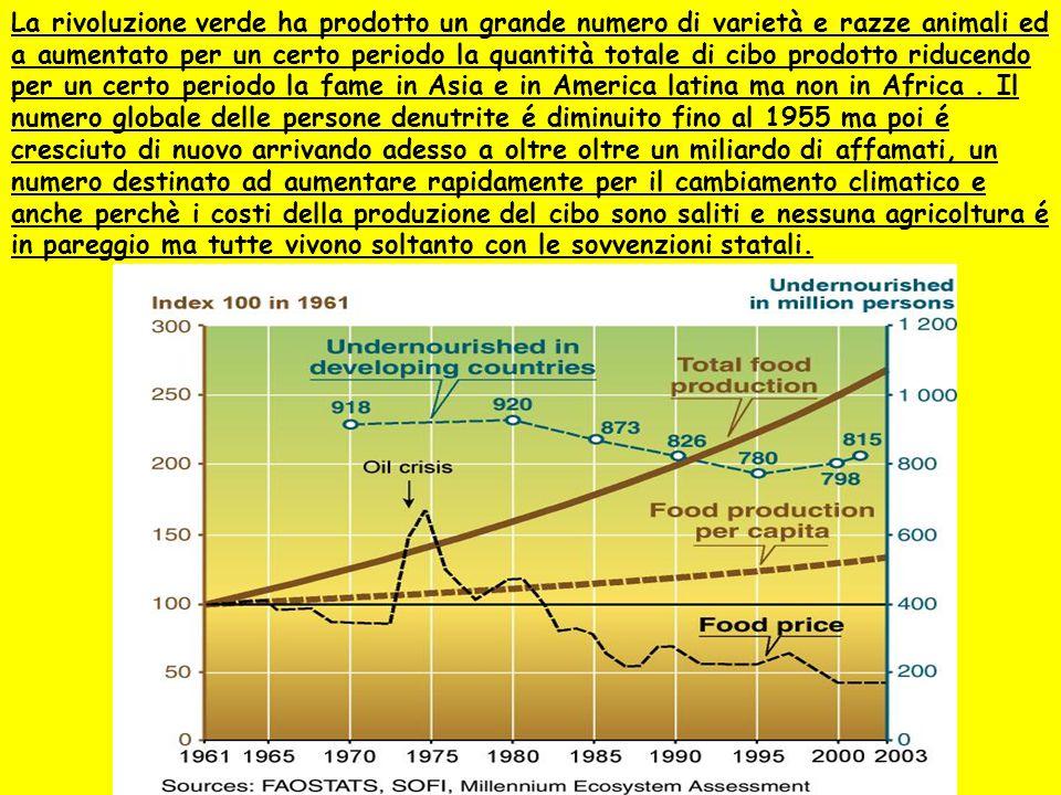 La rivoluzione verde ha prodotto un grande numero di varietà e razze animali ed a aumentato per un certo periodo la quantità totale di cibo prodotto r