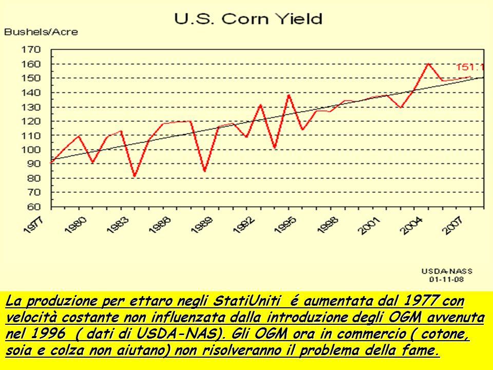 La produzione per ettaro negli StatiUniti é aumentata dal 1977 con velocità costante non influenzata dalla introduzione degli OGM avvenuta nel 1996 (