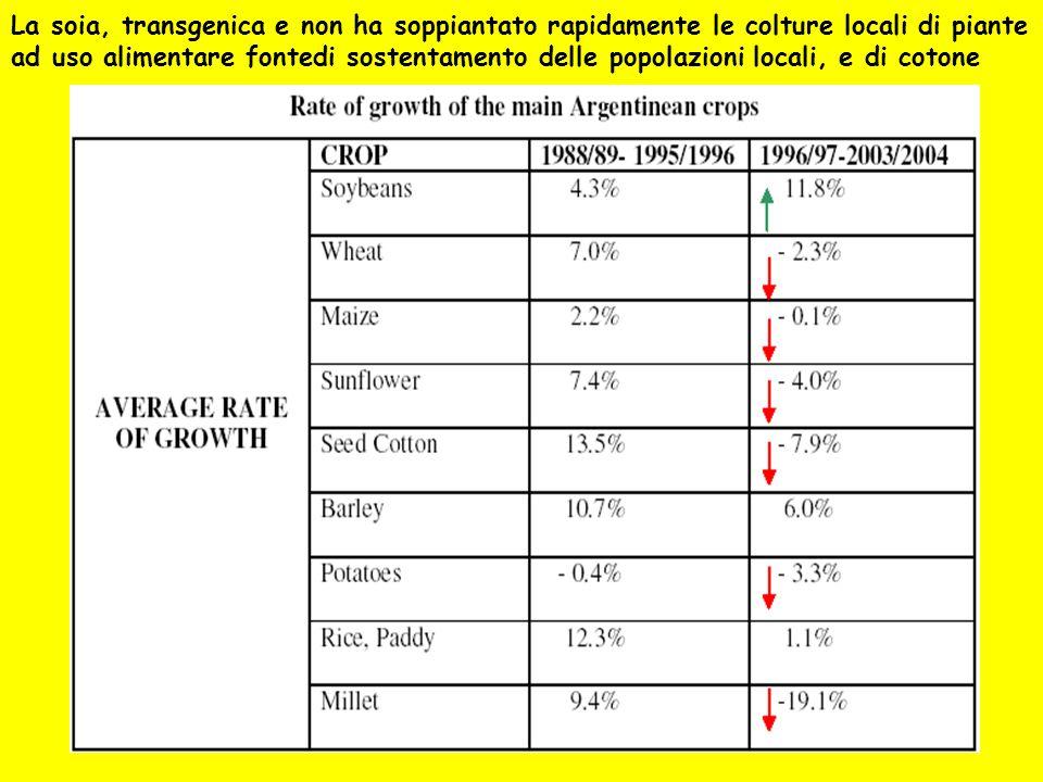 La soia, transgenica e non ha soppiantato rapidamente le colture locali di piante ad uso alimentare fontedi sostentamento delle popolazioni locali, e