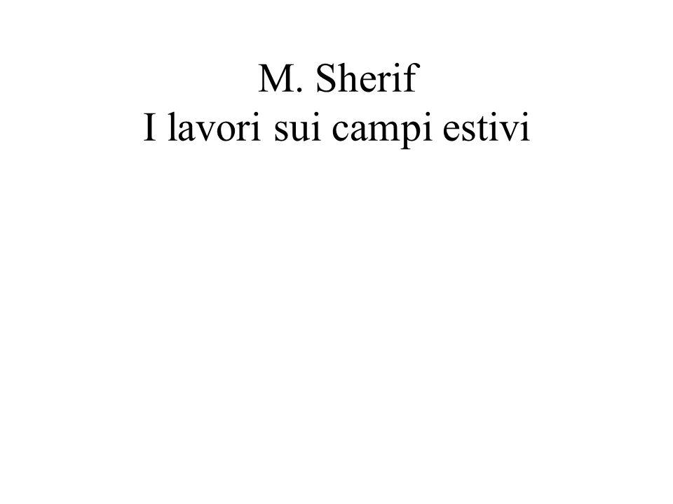 M. Sherif I lavori sui campi estivi