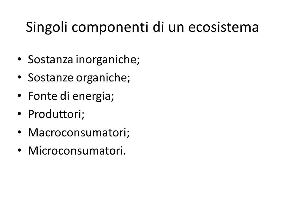 Singoli componenti di un ecosistema Sostanza inorganiche; Sostanze organiche; Fonte di energia; Produttori; Macroconsumatori; Microconsumatori.