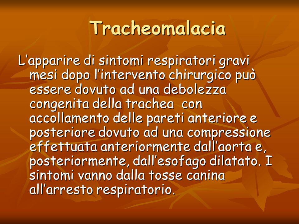Tracheomalacia Tracheomalacia L'apparire di sintomi respiratori gravi mesi dopo l'intervento chirurgico può essere dovuto ad una debolezza congenita d