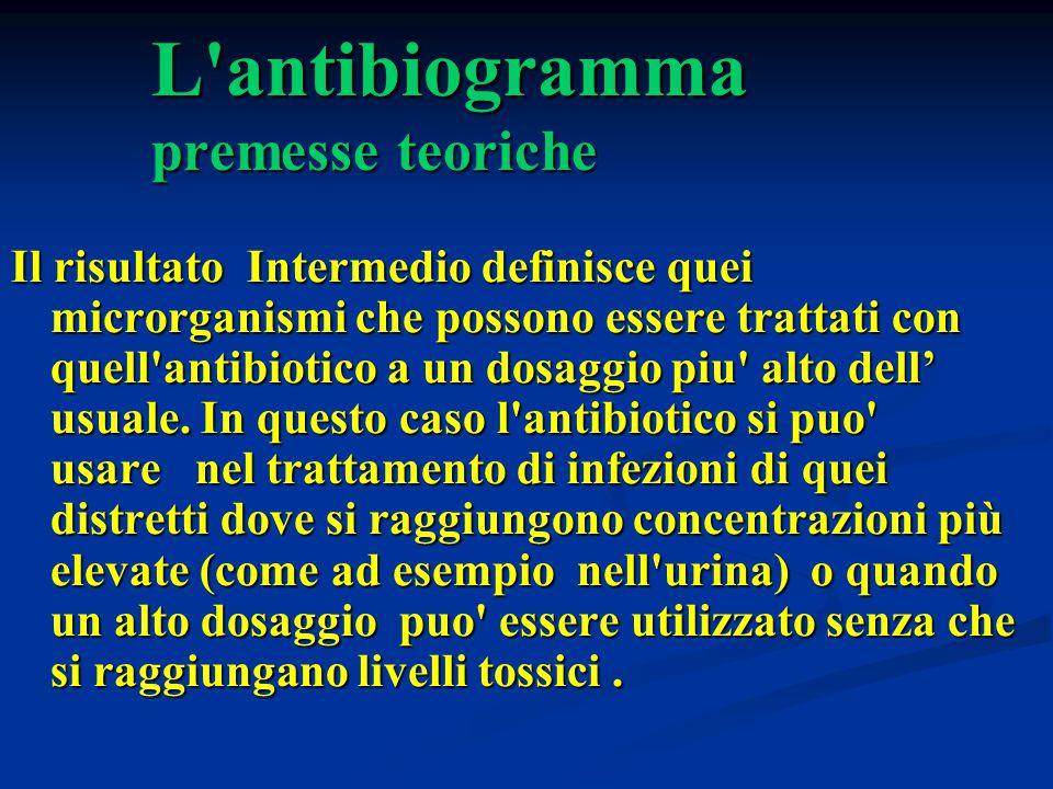 L'antibiogramma premesse teoriche Il risultato Intermedio definisce quei microrganismi che possono essere trattati con quell'antibiotico a un dosaggio