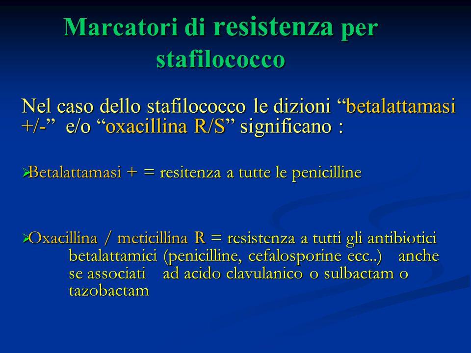 """Marcatori di resistenza per stafilococco Nel caso dello stafilococco le dizioni """"betalattamasi +/-"""" e/o """"oxacillina R/S"""" significano :  Betalattamasi"""