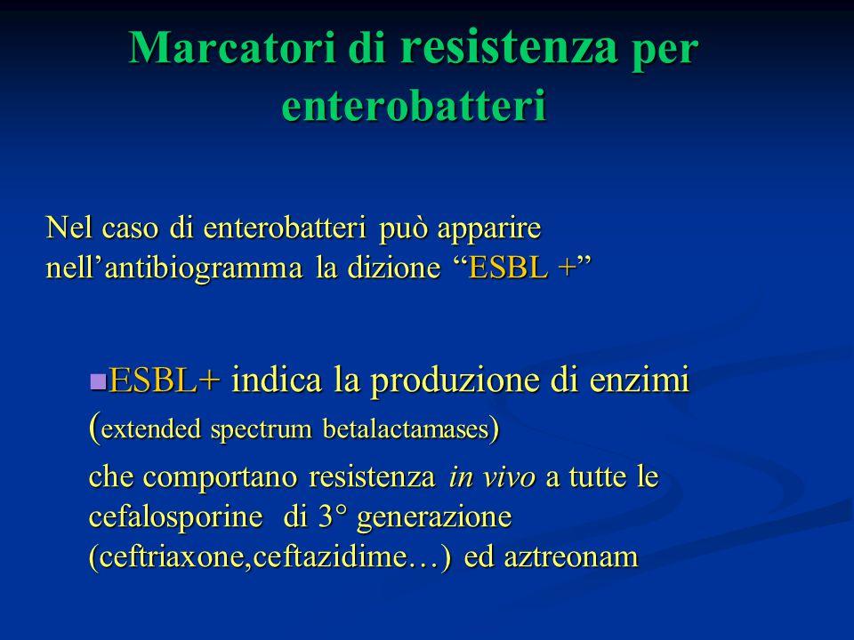 """Marcatori di resistenza per enterobatteri Nel caso di enterobatteri può apparire nell'antibiogramma la dizione """"ESBL +"""" ESBL+ indica la produzione di"""
