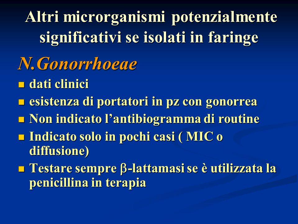 Altri microrganismi potenzialmente significativi se isolati in faringe Altri microrganismi potenzialmente significativi se isolati in faringe N.Gonorr