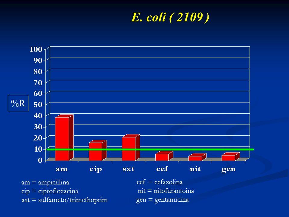 E. coli ( 2109 ) am = ampicillina cip = ciprofloxacina sxt = sulfameto/trimethoprim cef = cefazolina nit = nitofurantoina gen = gentamicina %R