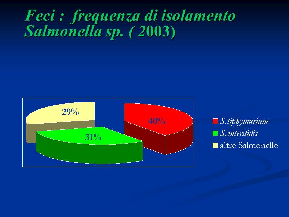Feci : frequenza di isolamento Salmonella sp. ( 2003) 40% 31% 29%