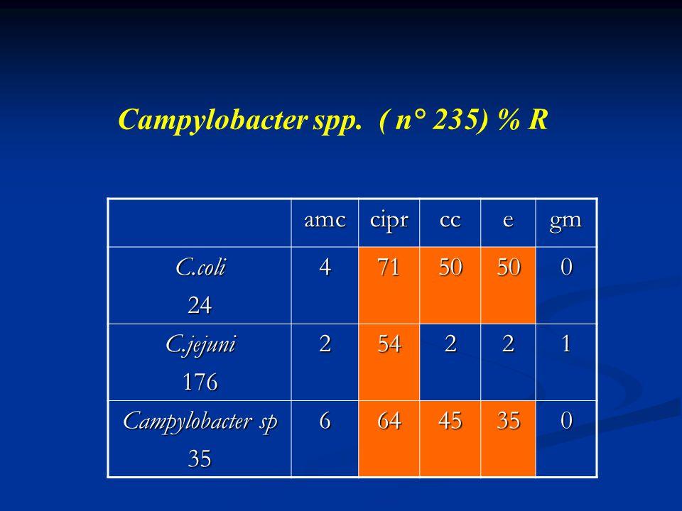 Campylobacter spp. ( n° 235) % R amcciprccegm C.coli2447150500 C.jejuni176254221 Campylobacter sp 3566445350