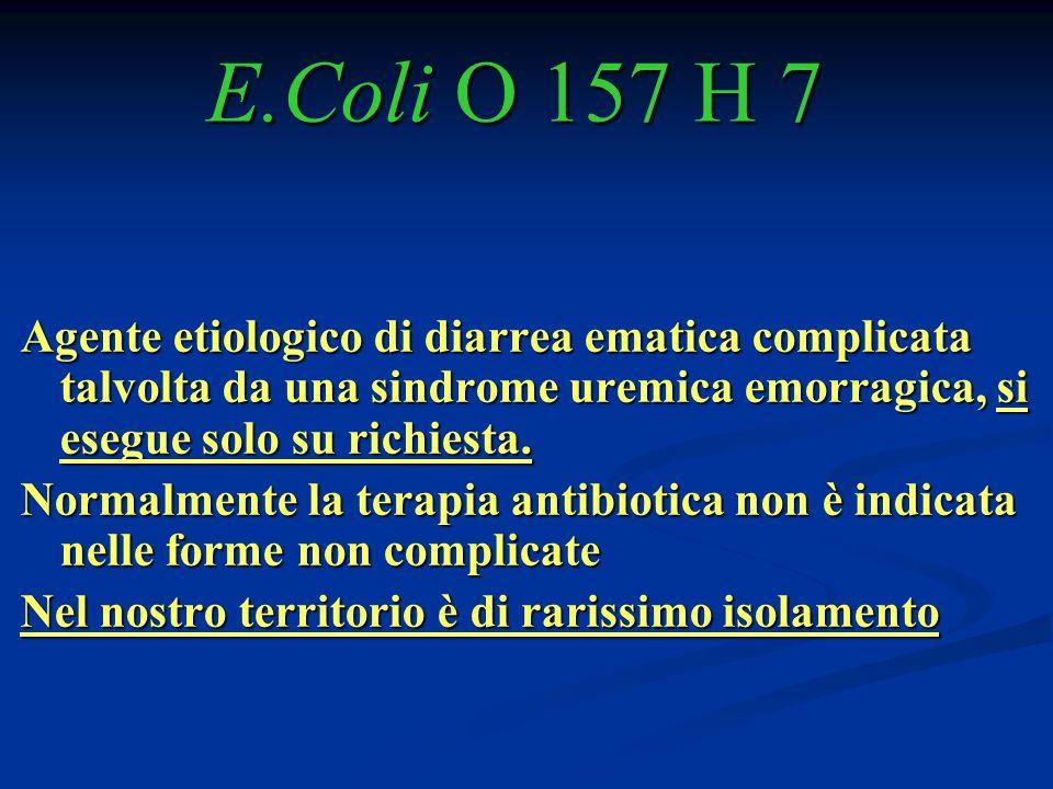 E.Coli O 157 H 7 Agente etiologico di diarrea ematica complicata talvolta da una sindrome uremica emorragica, si esegue solo su richiesta. Normalmente