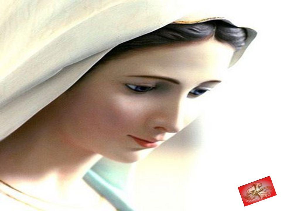 OCLEMENTE, O PIA,ascolta questa voce che canta per te l'AVE MARIA! Entra nel suo cuore e restaci per sempre, DOLCE VERGINE MARIA. E cosi' sia.