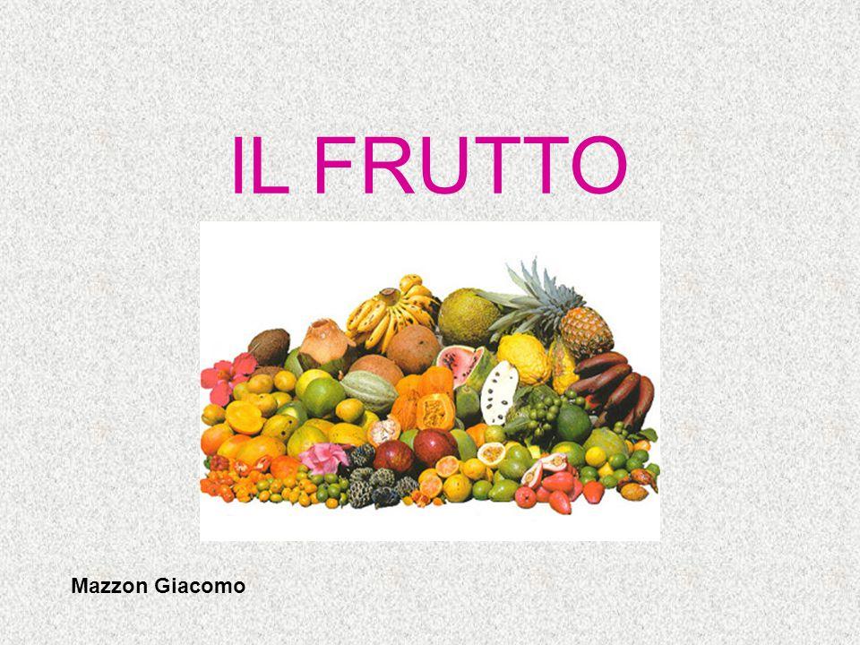 IL FRUTTO Il frutto prende origine dall'ingrossamento dell'ovario, ma in alcune specie (pero, melo) partecipano anche altre parti del fiore come il ricettacolo.