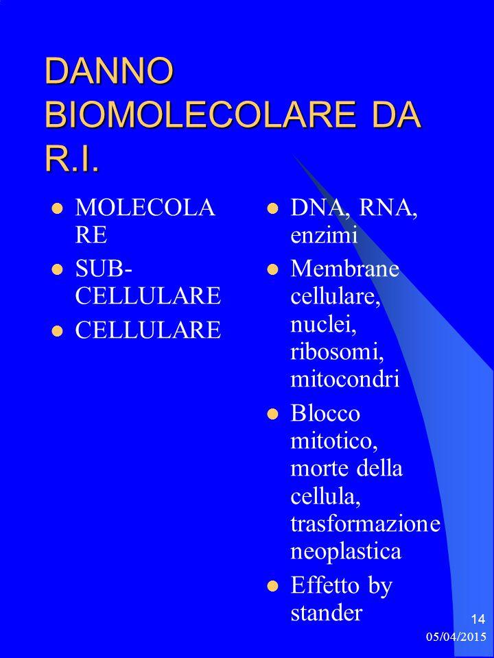 05/04/2015 14 DANNO BIOMOLECOLARE DA R.I. MOLECOLA RE SUB- CELLULARE CELLULARE DNA, RNA, enzimi Membrane cellulare, nuclei, ribosomi, mitocondri Blocc