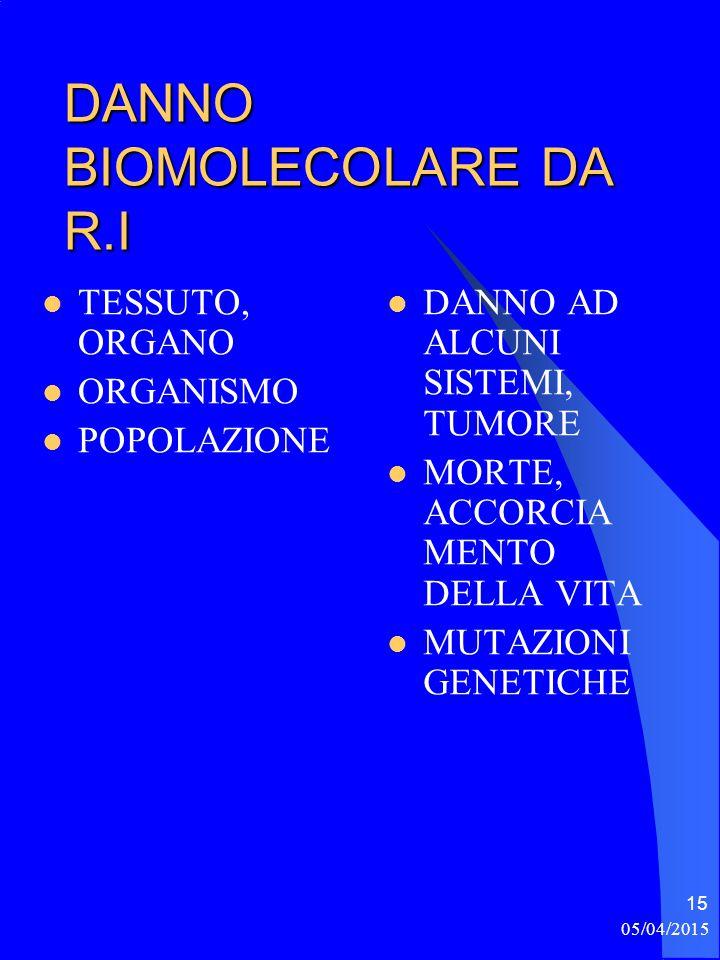 05/04/2015 15 DANNO BIOMOLECOLARE DA R.I TESSUTO, ORGANO ORGANISMO POPOLAZIONE DANNO AD ALCUNI SISTEMI, TUMORE MORTE, ACCORCIA MENTO DELLA VITA MUTAZIONI GENETICHE
