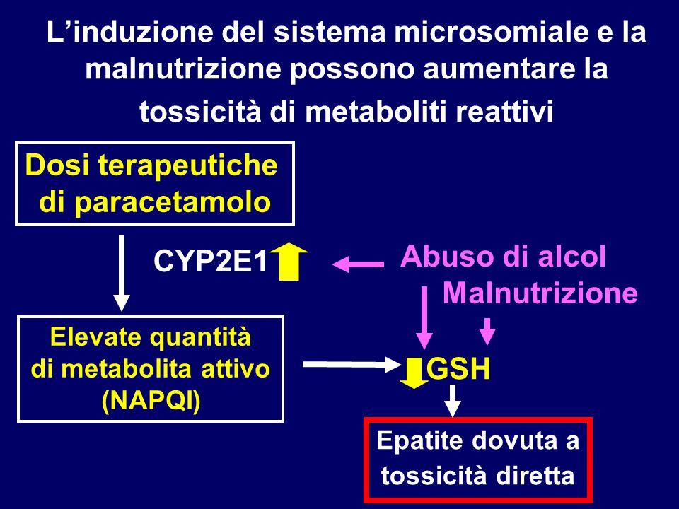 Dosi terapeutiche di paracetamolo Epatite dovuta a tossicità diretta CYP2E1 Elevate quantità di metabolita attivo (NAPQI) GSH Abuso di alcol Malnutriz