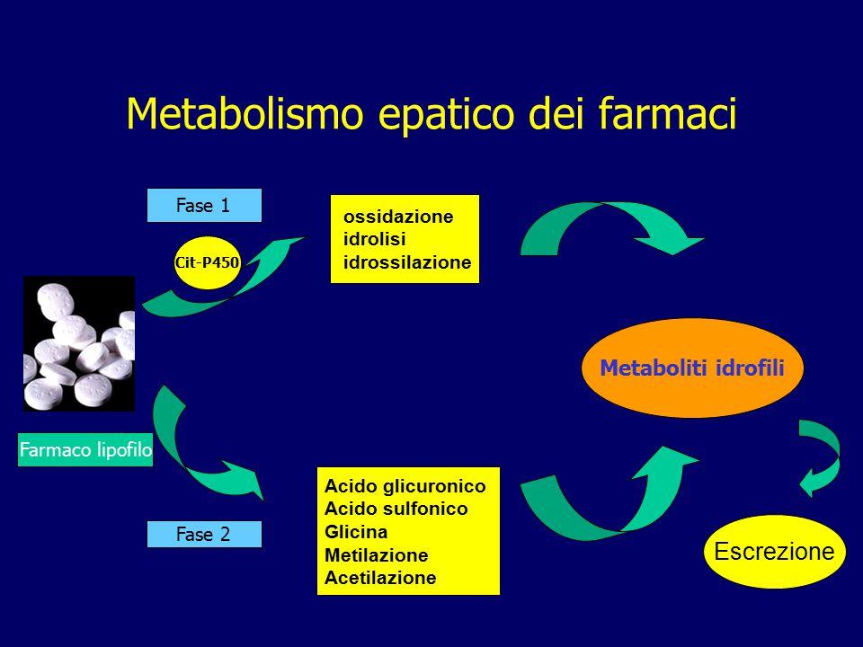 Metabolismo epatico dei farmaci Farmaco lipofilo Fase 1 Fase 2 Acido glicuronico Acido sulfonico Glicina Metilazione Acetilazione Cit-P450 ossidazione