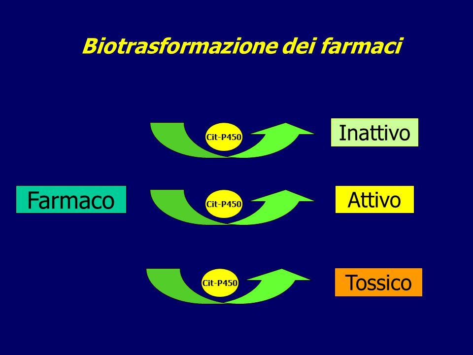 Danno epatico da paracetamolo Paracetamolo citocromo p-4502E1 Acido glicuronico glutatione Acido sulfonico glutatione Metabolita reattivo NAPQI Escrezione nelle urine (5-8%) Danno epatico