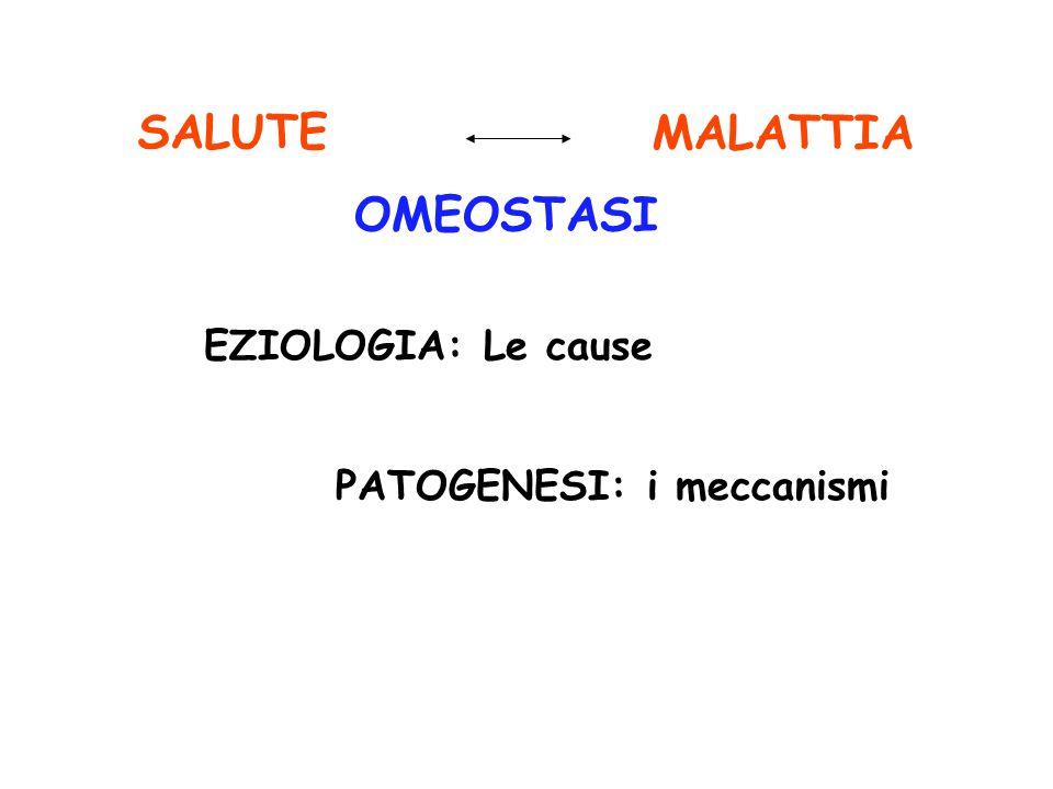 OMEOSTASI SALUTE EZIOLOGIA: Le cause PATOGENESI: i meccanismi MALATTIA