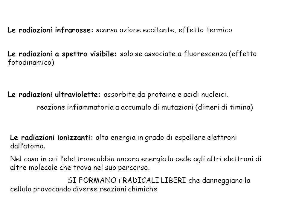 Le radiazioni infrarosse: scarsa azione eccitante, effetto termico Le radiazioni a spettro visibile: solo se associate a fluorescenza (effetto fotodin