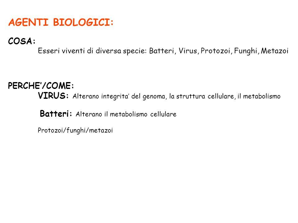 AGENTI BIOLOGICI: COSA: Esseri viventi di diversa specie: Batteri, Virus, Protozoi, Funghi, Metazoi PERCHE'/COME: VIRUS: Alterano integrita' del genom