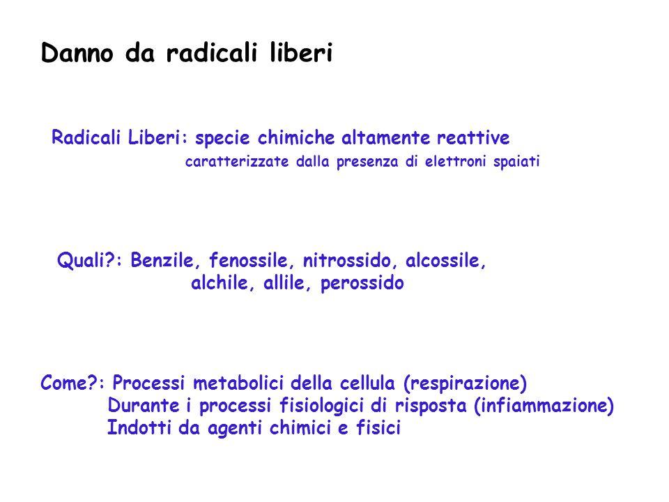 Danno da radicali liberi Radicali Liberi: specie chimiche altamente reattive caratterizzate dalla presenza di elettroni spaiati Quali?: Benzile, fenos