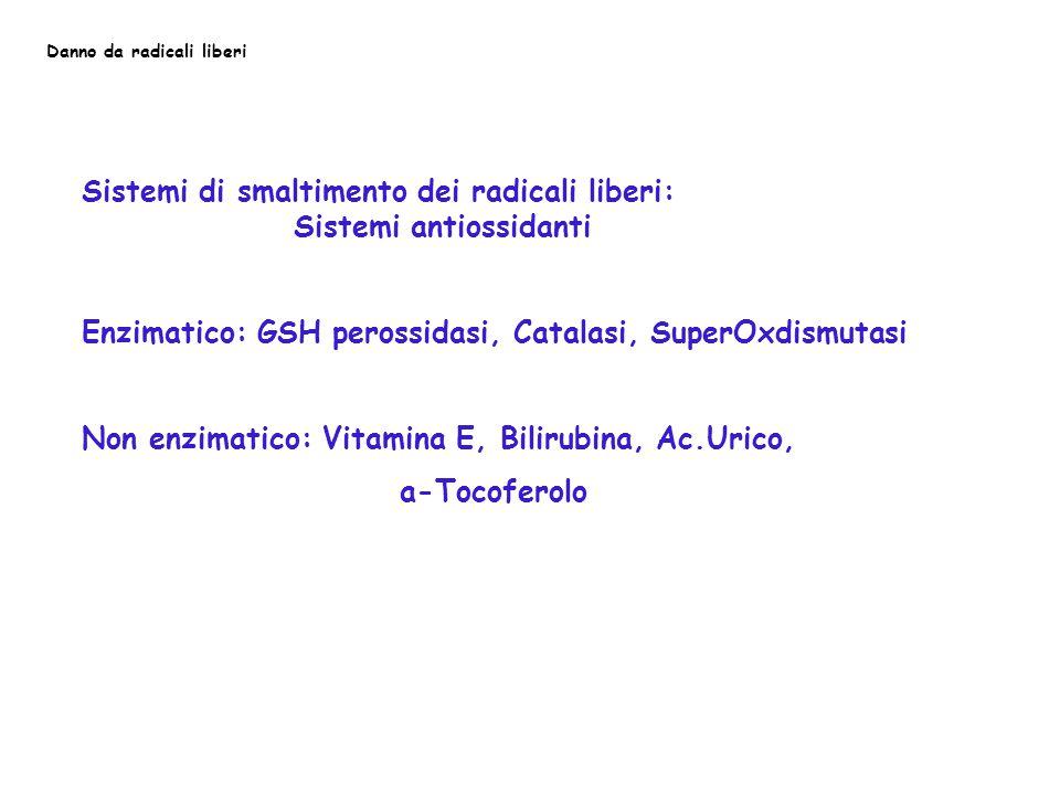 Danno da radicali liberi Sistemi di smaltimento dei radicali liberi: Sistemi antiossidanti Enzimatico: GSH perossidasi, Catalasi, SuperOxdismutasi Non