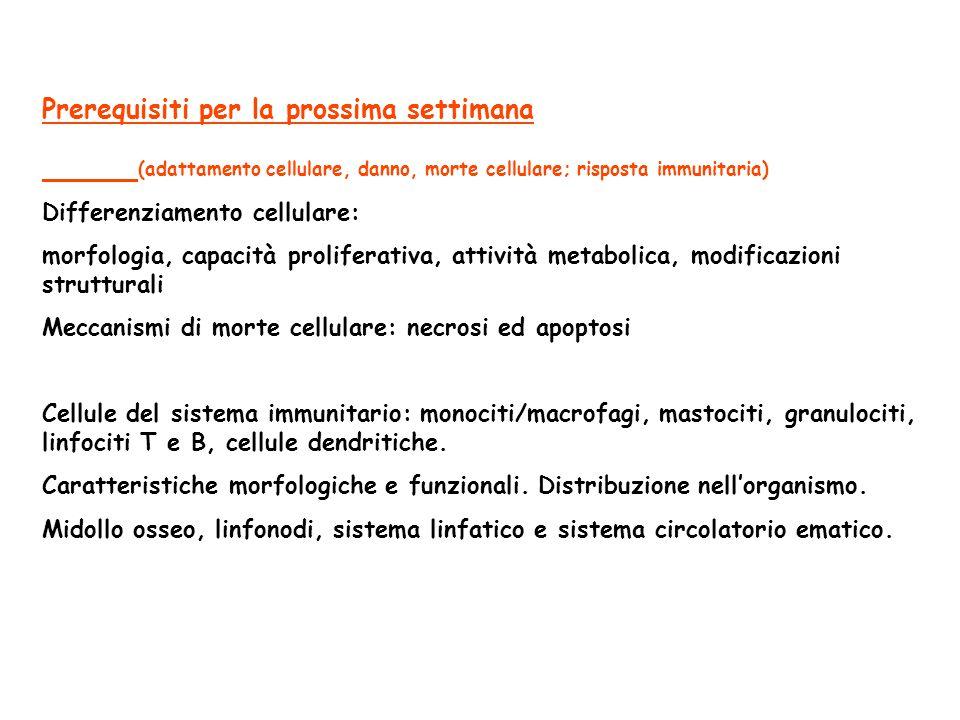 Prerequisiti per la prossima settimana (adattamento cellulare, danno, morte cellulare; risposta immunitaria) Differenziamento cellulare: morfologia, c