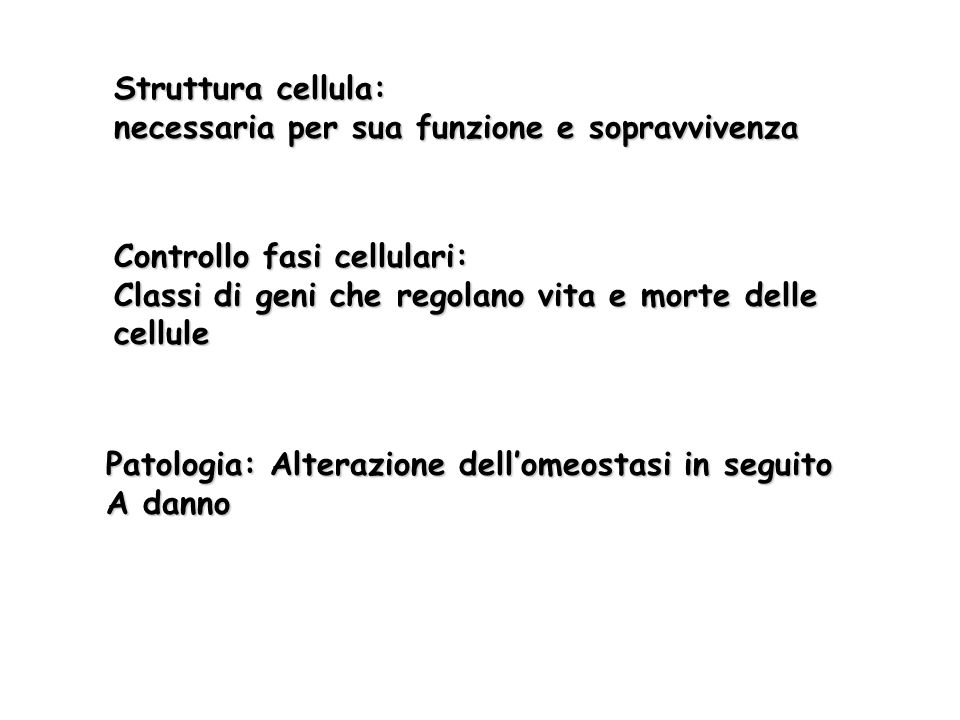 Struttura cellula: necessaria per sua funzione e sopravvivenza Controllo fasi cellulari: Classi di geni che regolano vita e morte delle cellule Patolo