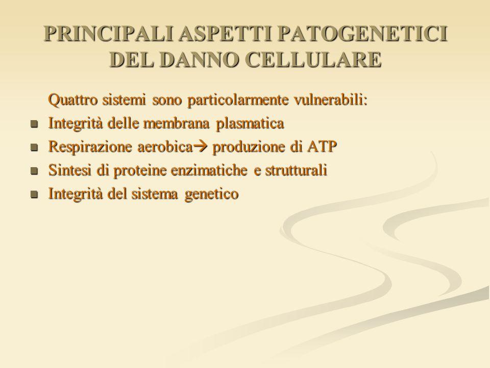 PRINCIPALI ASPETTI PATOGENETICI DEL DANNO CELLULARE Quattro sistemi sono particolarmente vulnerabili: Integrità delle membrana plasmatica Integrità de