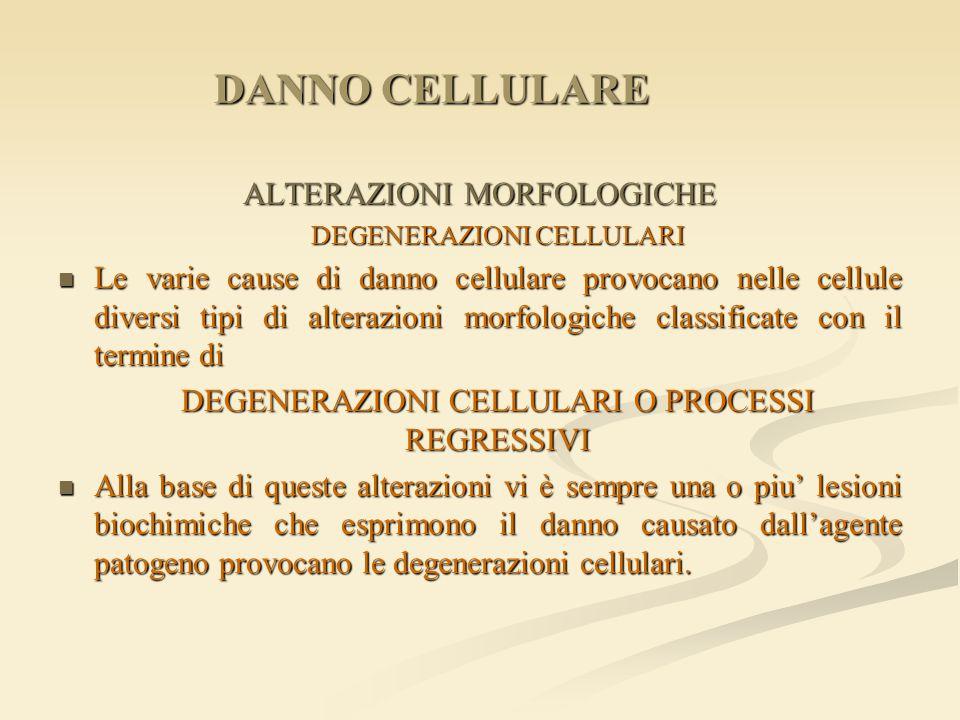 DANNO CELLULARE ALTERAZIONI MORFOLOGICHE DEGENERAZIONI CELLULARI Le varie cause di danno cellulare provocano nelle cellule diversi tipi di alterazioni