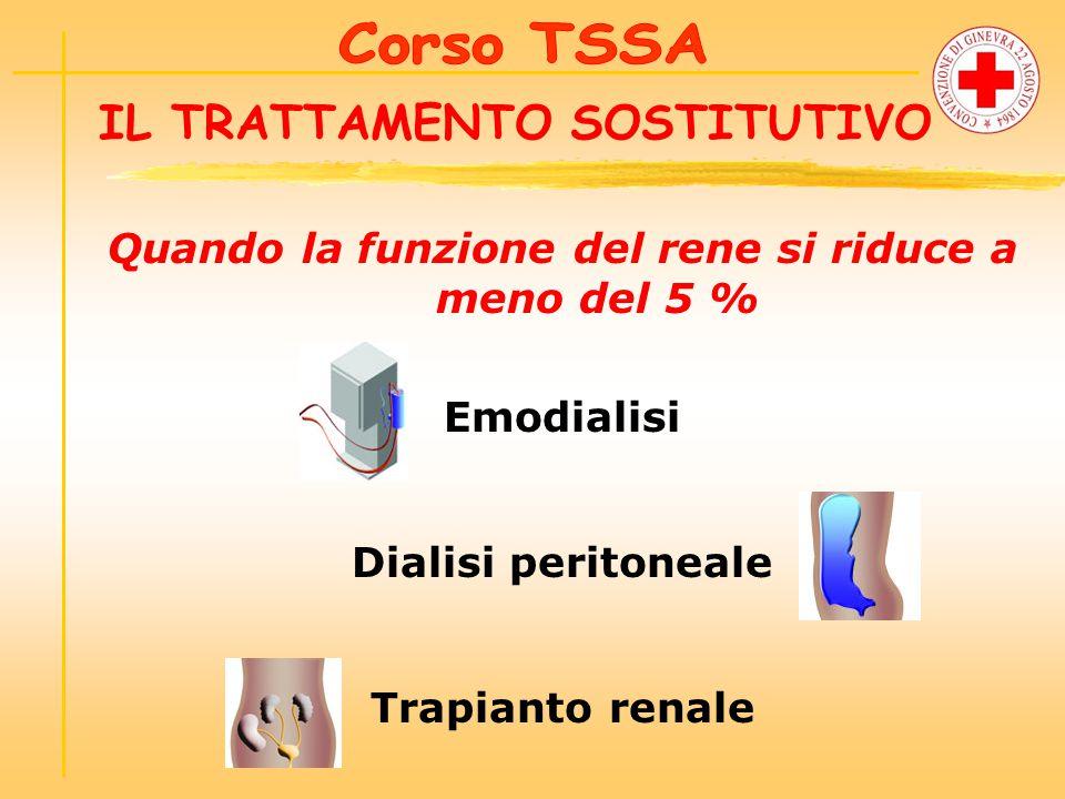 IL TRATTAMENTO SOSTITUTIVO Quando la funzione del rene si riduce a meno del 5 % Emodialisi Dialisi peritoneale Trapianto renale