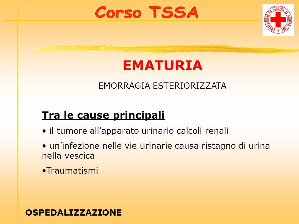 EMATURIA EMORRAGIA ESTERIORIZZATA Tra le cause principali il tumore all'apparato urinario calcoli renali un'infezione nelle vie urinarie causa ristagno di urina nella vescica Traumatismi OSPEDALIZZAZIONE