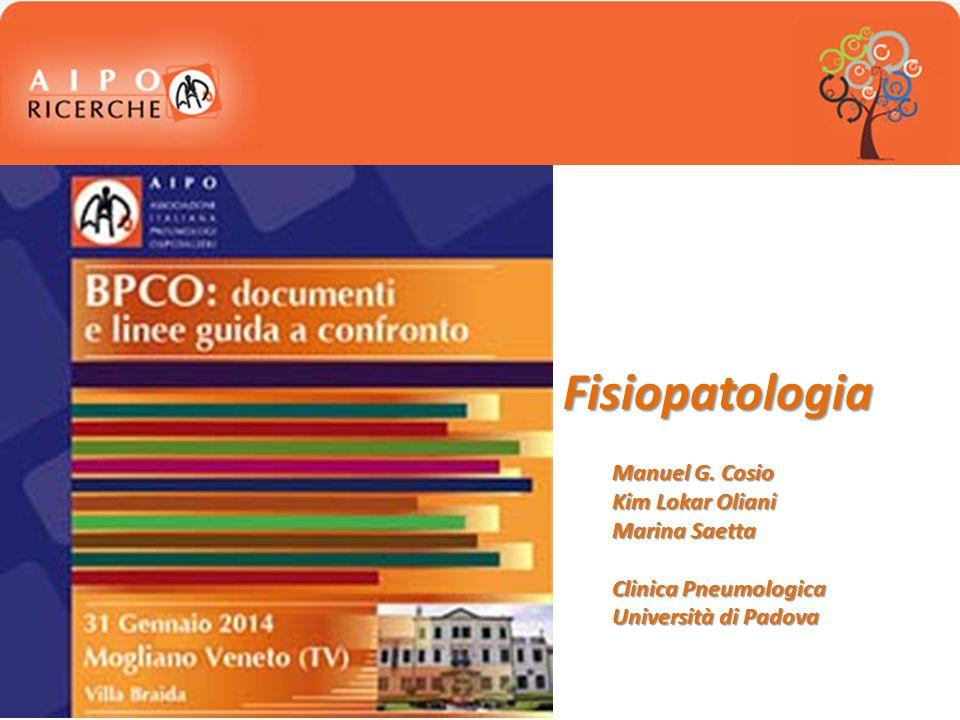 PATOGENESI E FISIOPATOLOGIA DELLA BPCO Meccanismi patogenetici Fisiopatologia: -Piccole vie aeree -Enfisema Bronchite cronica