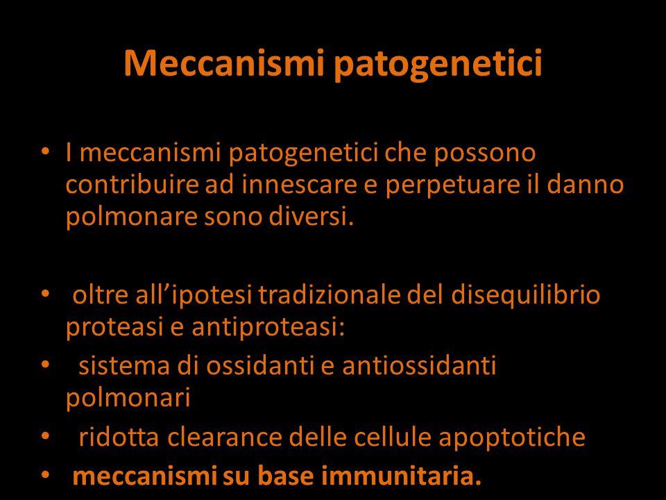 Meccanismi patogenetici I meccanismi patogenetici che possono contribuire ad innescare e perpetuare il danno polmonare sono diversi.