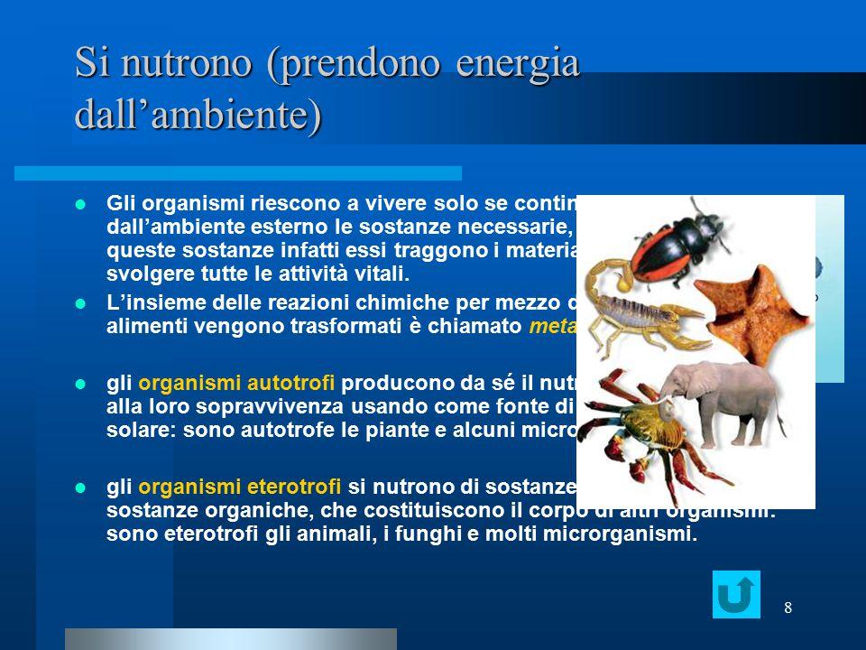 8 Si nutrono (prendono energia dall'ambiente) Gli organismi riescono a vivere solo se continuano ad assumere dall'ambiente esterno le sostanze necessa