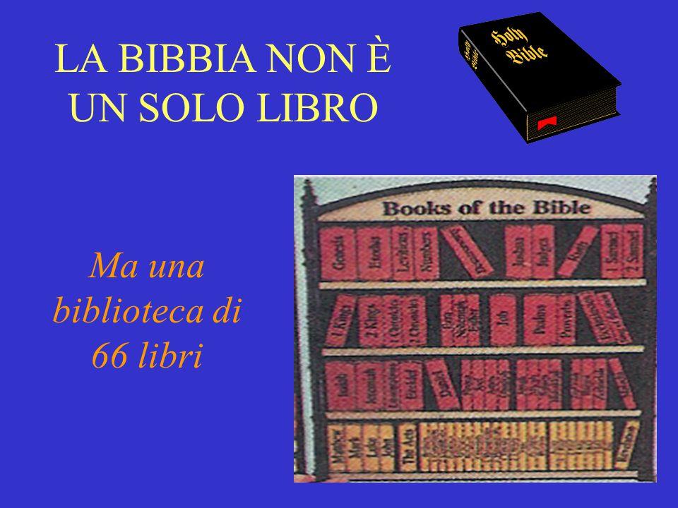 LA BIBBIA NON È UN SOLO LIBRO Ma una biblioteca di 66 libri