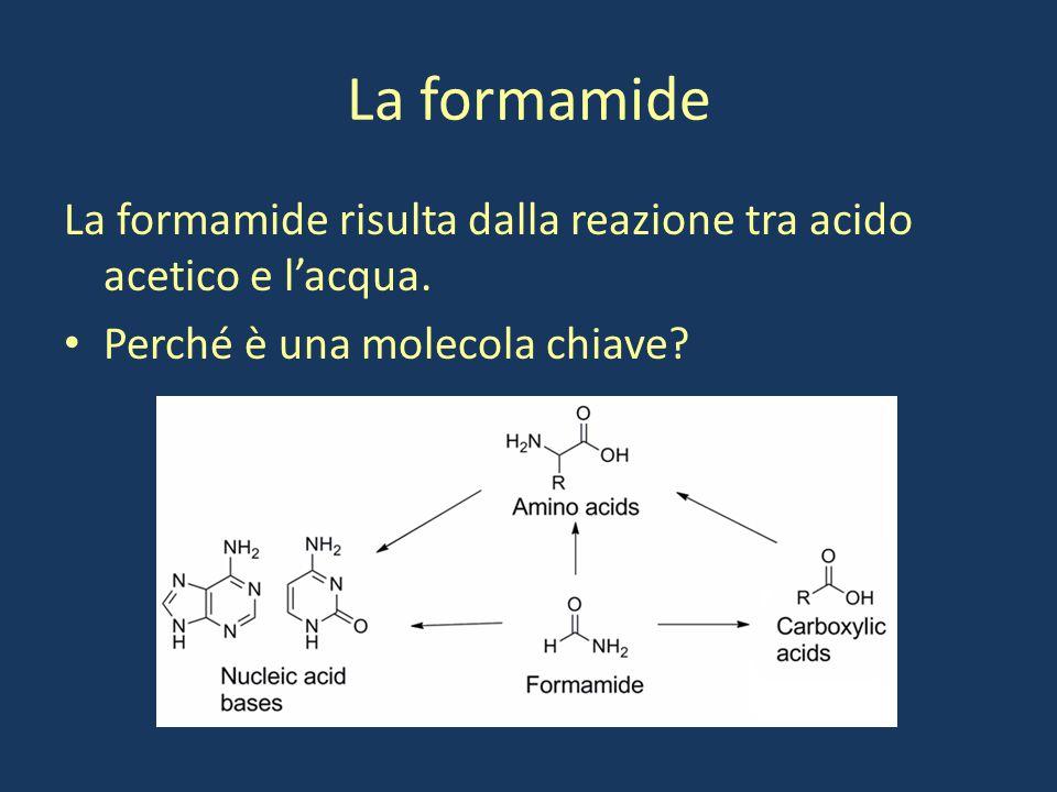 La formamide La formamide risulta dalla reazione tra acido acetico e l'acqua. Perché è una molecola chiave?