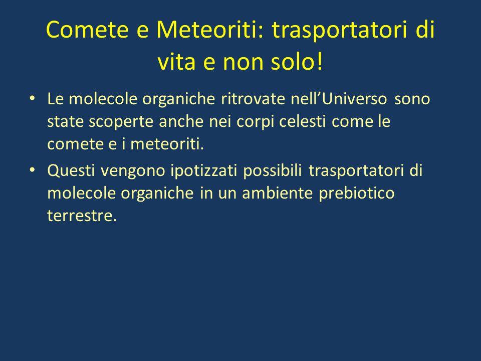 Comete e Meteoriti: trasportatori di vita e non solo! Le molecole organiche ritrovate nell'Universo sono state scoperte anche nei corpi celesti come l