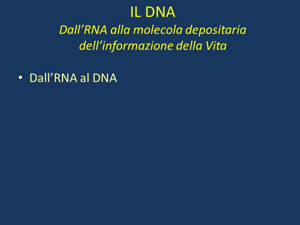 IL DNA Dall'RNA alla molecola depositaria dell'informazione della Vita Dall'RNA al DNA
